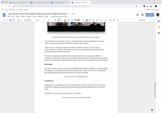 fig v - Screenshot of Google Docs Word document